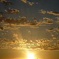 Sunshine Moment by Janet Matwiejow