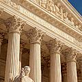 Supreme Court by Brian Jannsen