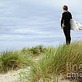 Surfer At The Beach Checking Out The Ocean Waves by Susan McKenzie