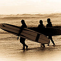 Surfs Up Sephia by Steve McKinzie