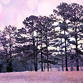 Surreal Fantasy Nature Purple Trees Landscape by Kathy Fornal