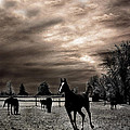 Surreal Horses Infrared Nature  by Kathy Fornal