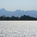 Sutter Buttes And Flooded Rice Field by Mark Greenberg