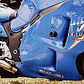 Suzuki Hayabusa by Michelle Calkins