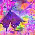 Swallowtail by Judi Bagwell