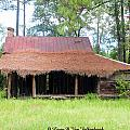 Swamp House Or Cracker Cabin by Larry Van Valkenburgh