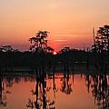 Swamp Sunset by Luana K Perez
