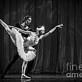 Swan Lake  White Adagio  Russia 3 by Clare Bambers