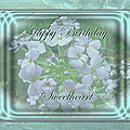 Sweetheart Birthday Greeting Card - Wild Phlox by Mother Nature
