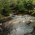 Swift River by Robert Anschutz