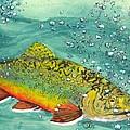 Swimming Upstream by Sheryl Brandes