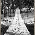 Swinging Cable Foot Bridge by John Stephens