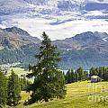 Swiss Alps by Mats Silvan