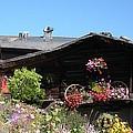 Swiss Chalet Interlaken by Marilyn Dunlap