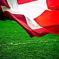 Swiss Flag by Olivier De Rycke