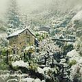 Switzerland In Winter by Joana Kruse