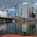 Sydney From Darling Harbour by Terry Everson