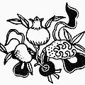 Symbol: Three Fruits by Granger