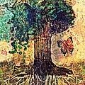 Symbolically Solid Tree by Paulo Zerbato