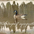 Sympathy Greeting Card - Canada Goose by Mother Nature