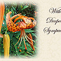 Sympathy Greeting Card - Wildflower Turk's Cap Lily by Mother Nature