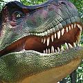 T-rex by Tammy Price