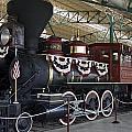 Tahoe Steam Locomotive by Sally Weigand