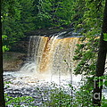 Tahquamenon Falls Of Michigan by Michael Carrothers