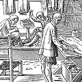Tailors, 16th Century by Granger
