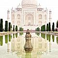 Taj Mahal On The Vertical by Valerie Rosen