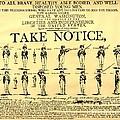 Revolutionary War  Take Notice  by Susan Carella