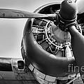 Take-off by Ken Marsh