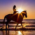 Taking In The Sun by Janet Fikar
