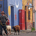 Taking Sheep To Market At Chichicastenango by Elizabeth Rose