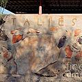 Taliesin Entry - Arizona by Mary Deal