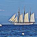 Tall Ship Blues by Lauren Serene