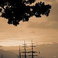 Tall Ship Gorch Fock by Gaspar Avila