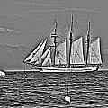 Tall Ship  by Lauren Serene