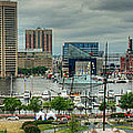 Tall Ships At Baltimore Inner Harbor by Mark Dodd