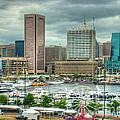 Tall Ships In The Inner Harbor by Mark Dodd