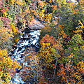 Tallulah River Gorge by Susan Leggett