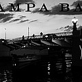 Tampa Bay by David Lee Thompson