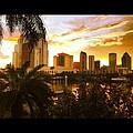 Tampa Bay Fl by Erik Hogan