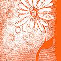 Tangerine Daisy By Shawna Erback by Shawna Erback