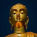 Tangsai Buddha by Adrian Evans
