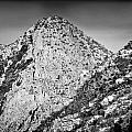 Taos Mountain 3 by Lisa  Spencer