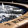 Tcu Frog Fountain by Judge Howell