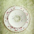 Tea Leaves by Stephanie Frey