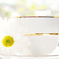 Teacup Filled With Sunshine by Kim Fearheiley