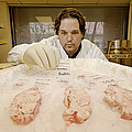 Technician Examines Human Brain Sections by Volker Steger
